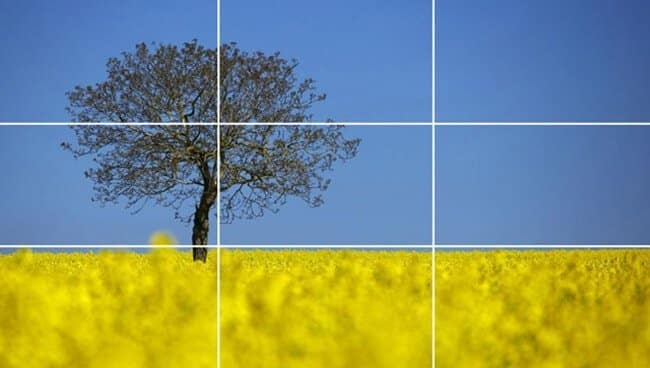 rule of thirds example