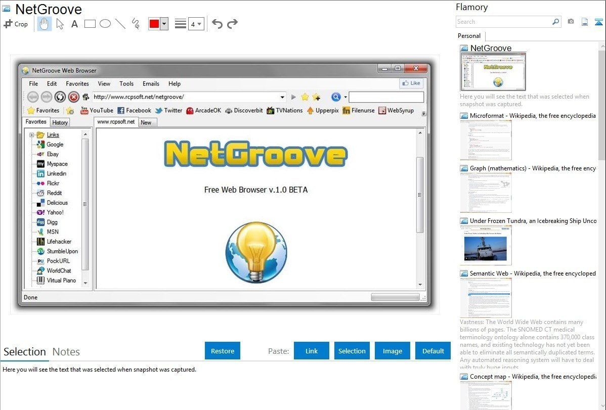 NetGroove Browser