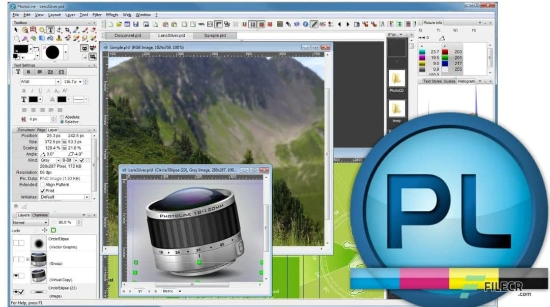 Photoline is a simple open-source Adobe Photoshop that can accomplish several challenging tasks.