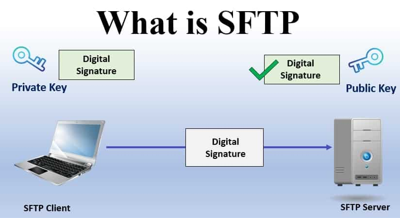 Why Should You Choose Best SFTP Server Over Ftp
