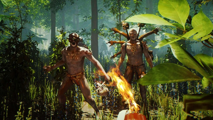 The Forest fighting game