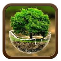 Green Nature Cartoon Theme-themes for Android Free